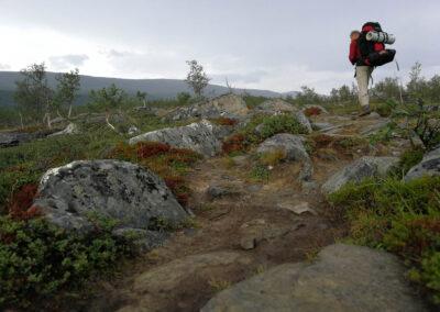 Švedijos Laplandija